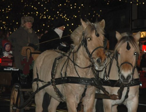Ridgefield Holiday Stroll Horse and Carriage Rides Friday Night Only